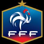 Ponturi pariuri meciuri amicale - Franta vs Coasta de Fildes